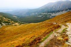 Bello paesaggio della montagna con vegetazione sui precedenti di cielo blu Fotografie Stock