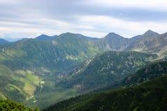 Bello paesaggio della montagna con vegetazione sui precedenti di cielo blu Immagini Stock Libere da Diritti