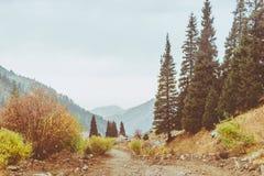 Bello paesaggio della montagna del percorso della montagna di autunno Immagini Stock