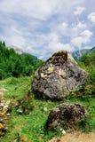 Bello paesaggio della montagna di carpathians del rumeno Immagini Stock Libere da Diritti