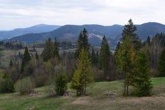 Bello paesaggio della montagna di estate, Immagine Stock