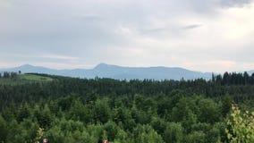Bello paesaggio della montagna Montagne di estate video d archivio