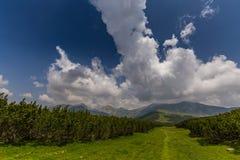 Bello paesaggio della montagna nelle alpi di Transylvanian Fotografie Stock Libere da Diritti