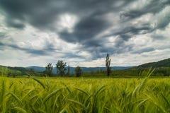 Bello paesaggio della montagna nelle alpi di Transylvanian Immagini Stock Libere da Diritti