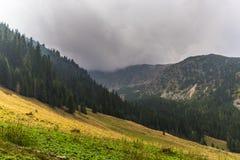 Bello paesaggio della montagna nelle alpi di Transylvanian di estate Immagine Stock