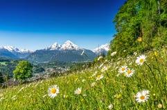 Bello paesaggio della montagna nelle alpi nella primavera Fotografia Stock