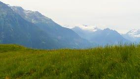 Bello paesaggio della montagna nelle alpi svizzere di estate Immagini Stock
