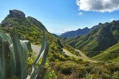 Bello paesaggio della montagna sull'isola tropicale Tenerife, canarino Immagine Stock