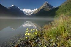 Bello paesaggio della montagna vicino al lago Mountain Lake Genere di terreno montagnoso e dell'acqua nella valle Fotografia Stock Libera da Diritti