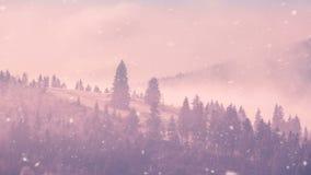 Bello paesaggio della natura di inverno della foresta nebbiosa video d archivio