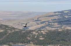 Bello paesaggio della natura nel Patagonia, Argentina Fotografia Stock