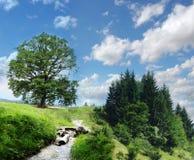 Bello paesaggio della natura nelle montagne Immagini Stock Libere da Diritti