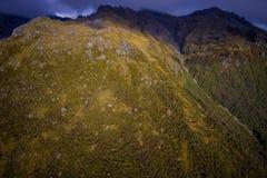 Bello paesaggio della Nuova Zelanda - colline coperte da erba di montagne vigorose coperte da neve dietro, sud Immagine Stock Libera da Diritti
