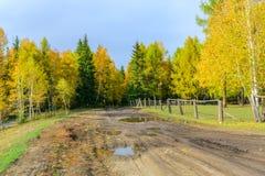 Bello paesaggio della Repubblica della montagna di Altai, l'autunno tardo, R Fotografie Stock Libere da Diritti
