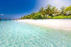 Bello paesaggio della spiaggia nelle isole delle Maldive Mare e palme blu di stupore con i fasci del sole immagini stock libere da diritti