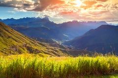 Bello paesaggio delle alpi italiane, dolomia di estate, del sud Fotografia Stock Libera da Diritti