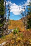 Bello paesaggio delle montagne. Immagine Stock Libera da Diritti
