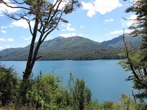 Bello paesaggio delle montagne e dei laghi circondati dagli alberi e rami in Bariloche, Argentina Immagine Stock