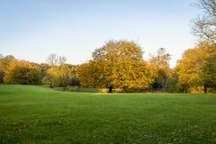 Bello paesaggio di autunno Fotografia Stock