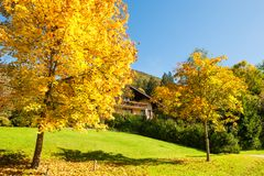 Bello paesaggio di autunno in alpi austriache Immagini Stock