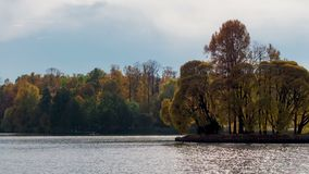 Bello paesaggio di autunno di lasso di tempo in foresta dal lago stock footage