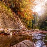 Bello paesaggio di autunno Piccolo fiume della montagna in autunno Fotografia Stock