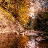 Bello paesaggio di autunno Piccolo fiume della montagna Fotografia Stock