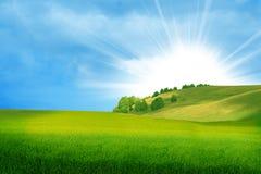 Bello paesaggio di estate Fotografia Stock