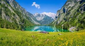 Bello paesaggio di estate al Obersee, Koenigssee, Bavari Fotografia Stock Libera da Diritti