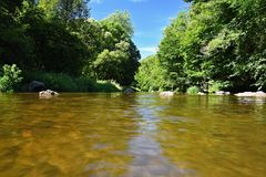 Bello paesaggio di estate con il fiume, la foresta, il sole ed i cieli blu Sfondo naturale Fotografia Stock