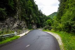 Bello paesaggio di estate con la strada e foresta nelle alpi Fotografia Stock