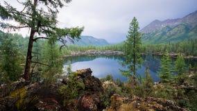 Bello paesaggio di estate con un lago dell'alta montagna Natura selvaggia e pacifica maestosa in Russia, Sayan orientale Fotografia Stock Libera da Diritti