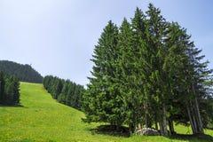 Bello paesaggio di estate nelle alpi francesi Immagini Stock Libere da Diritti