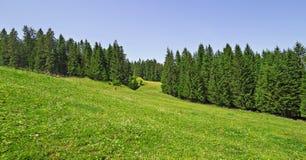 Bello paesaggio di estate nelle alpi francesi Immagine Stock