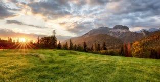 Bello paesaggio di estate nelle montagne ALBA Immagini Stock