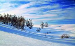 Bello paesaggio di inverno Fotografia Stock