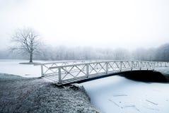 Bello paesaggio di inverno Fotografie Stock Libere da Diritti