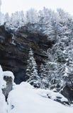Bello paesaggio di inverno in bianco e nero in alpi julian nevose, Slovenia Fotografia Stock Libera da Diritti