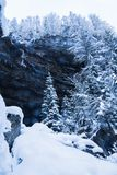 Bello paesaggio di inverno in bianco e nero in alpi julian nevose, Slovenia Fotografia Stock