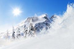 Bello paesaggio di inverno con gli alberi Immagine Stock