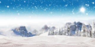 Bello paesaggio di inverno con gli alberi Fotografie Stock