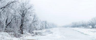 Bello paesaggio di inverno con gli alberi coperti di brina Fotografia Stock