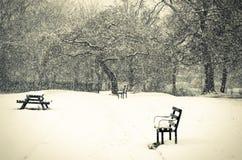 Bello paesaggio di inverno con gli alberi innevati Fotografie Stock Libere da Diritti