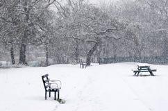 Bello paesaggio di inverno con gli alberi innevati Banchi in a Fotografia Stock Libera da Diritti