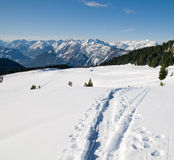 Bello paesaggio di inverno con il sentiero per pedoni Immagine Stock