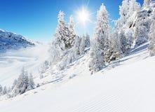 Bello paesaggio di inverno con la pista ideale Fotografie Stock Libere da Diritti