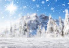 Bello paesaggio di inverno con la pista ideale Fotografia Stock