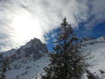 Bello paesaggio di inverno delle montagne del gebirge dei totalizzatori Immagini Stock