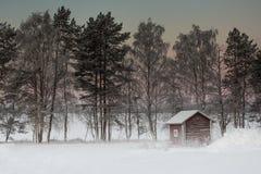 Bello paesaggio di inverno in Lapponia Finlandia Fotografie Stock Libere da Diritti