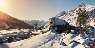 Bello paesaggio di inverno, montagne di Altai, Siberia, Russia Immagine Stock